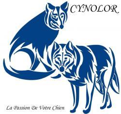 Nouveau logo cynolor